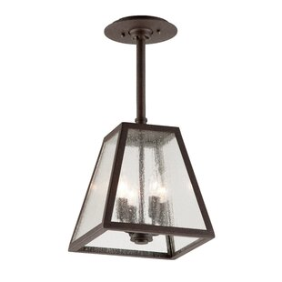 Compare Bridgwater 4-Light Outdoor Pendant By Canora Grey