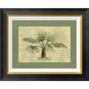 'Palmas Isle' by Janet Kruskamp Framed Graphic Art by Global Gallery