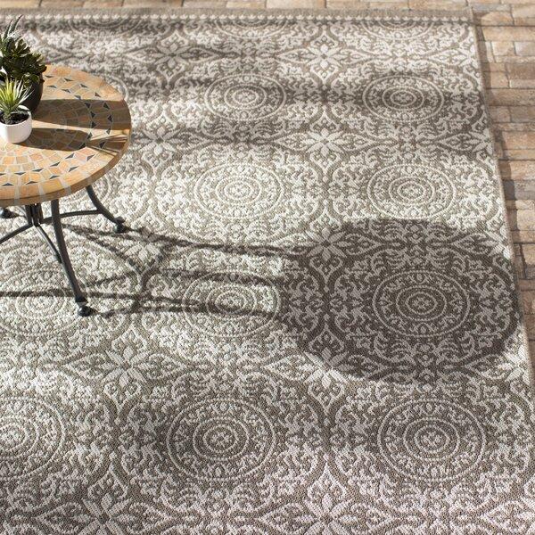 Elmer Bundoran Gray/Silver Indoor/Outdoor Area Rug by Alcott Hill