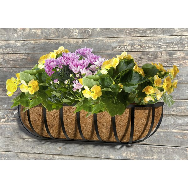 English Wall Planter by Panacea Products