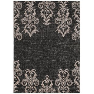 Budget Bush Transitional Black/Pale Pink Area Rug By House of Hampton