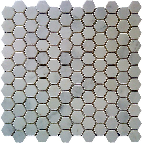 Hexagon 1 x 1 Marble Mosaic Tile in White Statuary by Luxsurface