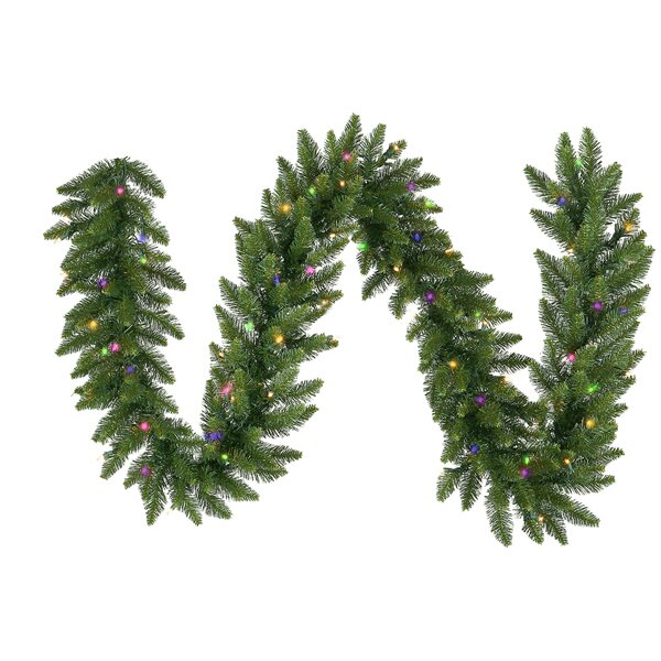 Camdon Fir Commercial Artificial Christmas Garland by Vickerman
