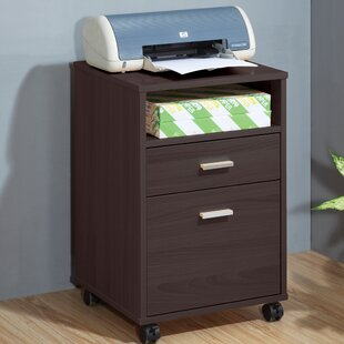 Mobile Printer Stand With Storage Cabinet
