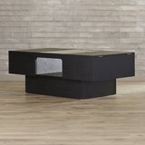 Moyle Coffee Table with Storage by Brayden Studio®