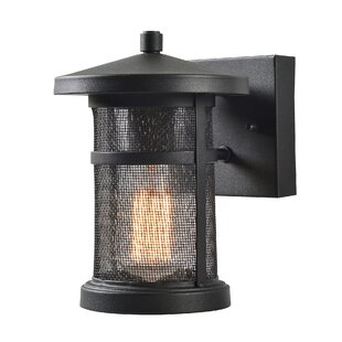 Renay 1-Light Outdoor Wall Lantern By Williston Forge Outdoor Lighting