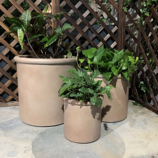 Nuneaton Tall Rim Cylinder 3-Piece Pot Planter Set by Charlton Home