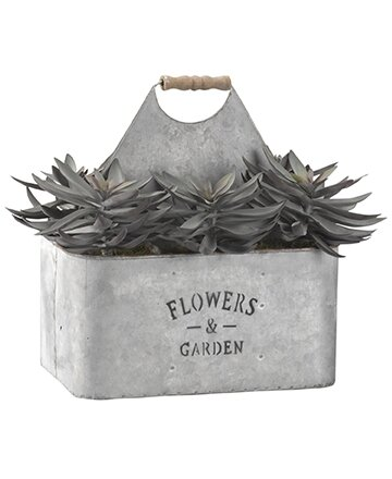 Frosted Echeveria Floor Succelent Plant in Rectangle Metal Planter by Ophelia & Co.