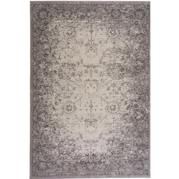 Eila Pearl Indoor/Outdoor Area Rug by Alcott Hill