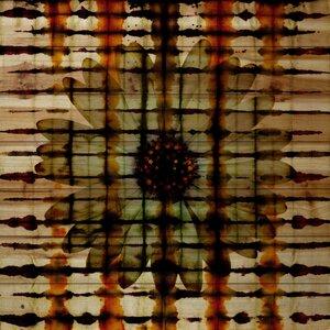 'Jailed Daisy' by Parvez Taj Painting Print on Natural Pine Wood by Parvez Taj