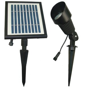 Affordable 2-Piece Spot Light Set By Solar Goes Green