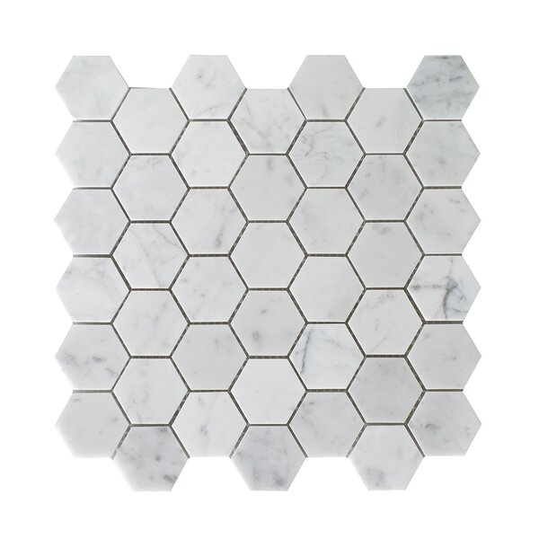 Bianco Carrara Hexagon Honed 12 x 12 Natural Stone Mosaic Tile in White by Seven Seas