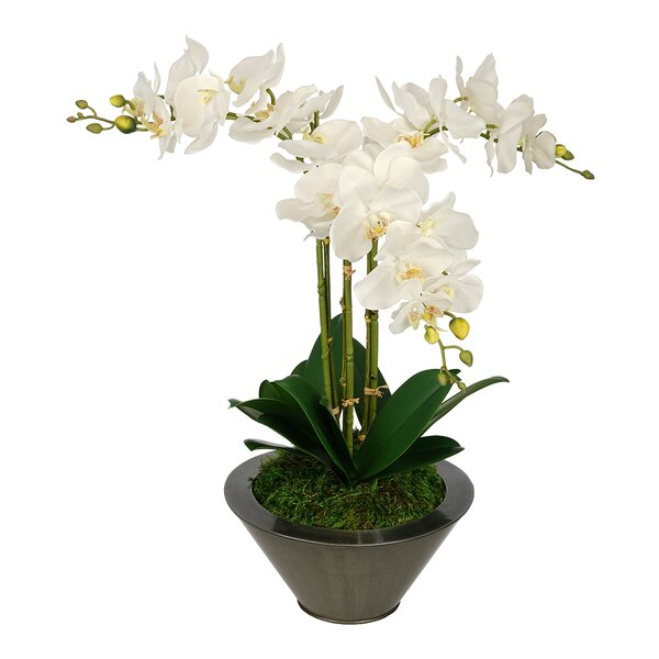 Artificial Triple Stem Orchid in Round Zinc Vase by House of Silk Flowers Inc.