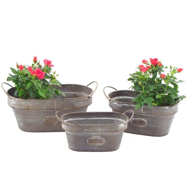 Oval 3-Piece Iron Pot Planter Set by Zaer Ltd International