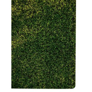 Sanford Solid Hand-Woven Green Area Rug