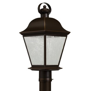 Best Reviews Darrah Outdoor 1-Light LED Lantern Head By Three Posts