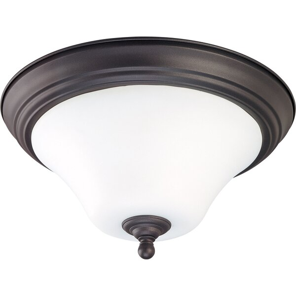 Cayden 1-Light Outdoor Flush Mount by Fleur De Lis Living