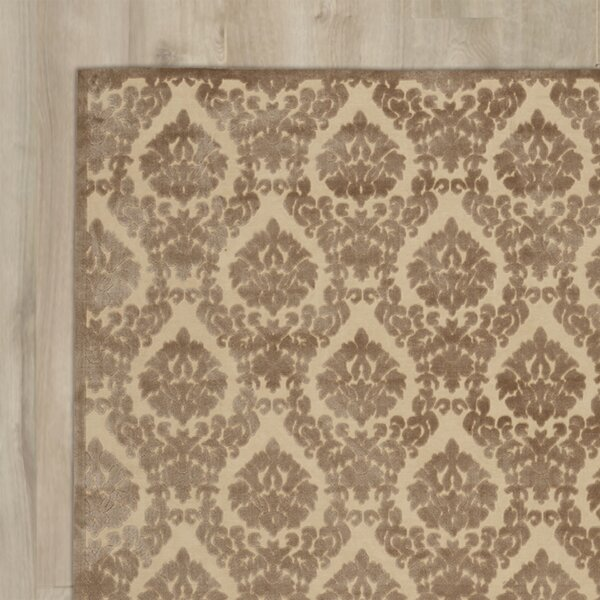 Weissport Beige/Mocha Area Rug by Three Posts