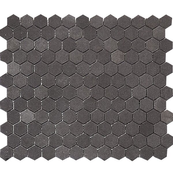 Lava Hexagon 1 x 1 Stone Mosaic Tile in Black Honed by Parvatile