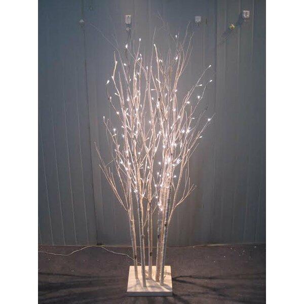 Hi Line Gift Ltd 160 Led Light Birch Tree Amp Reviews Wayfair