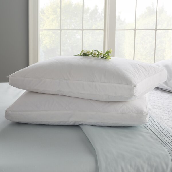 Double Quilted Goose Feather Standard Pillow (Set of 2) by Blue Ridge Home Fashions