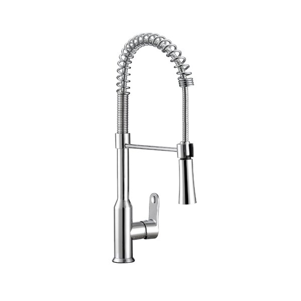 Euphoria Pull Down Single Handle Kitchen Faucet by Safavieh