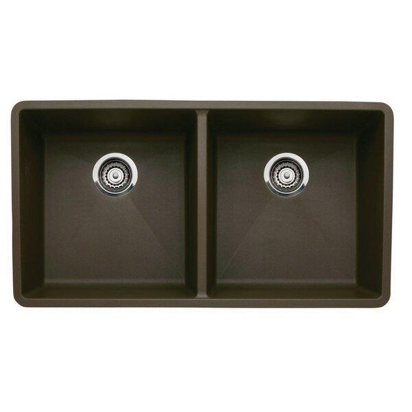Precis 29.75 L x 18.13 W Equal Double Bowl Kitchen Sink by Blanco