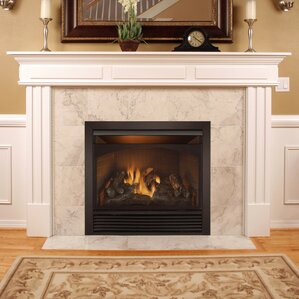 gas wall fireplaces. Full Size Dual Fuel Ventless Fireplace Insert Gas  Propane Fireplaces You ll Love Wayfair