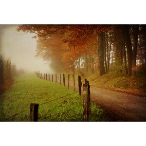 Foggy Morning on Hyatt Lane by Danny Head Photographic Print on Canvas by Art Effects