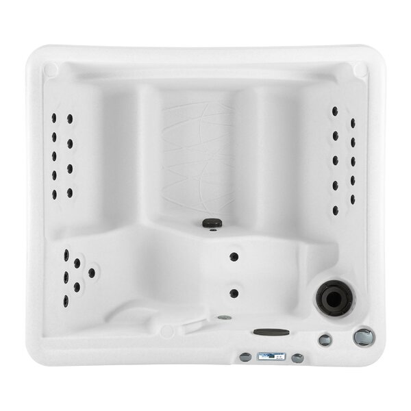 LS350 5-Person 28-Jet Plug and Play Spa with Ozone Purification by Lifesmart Spas