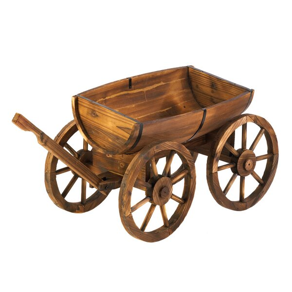 Fir Wheelbarrow Planter by Zingz & Thingz