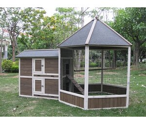 Save To Idea Board Innovation Pet Coops Feathers Gazebo Chicken Coop
