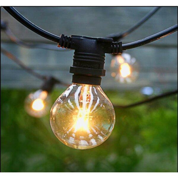 Scarsdale Vintage 25-Light Globe String Light by Laurel Foundry Modern Farmhouse