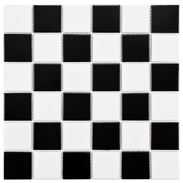 Arctic 2 x 2 Porcelain Mosaic Tile in Black/White by EliteTile