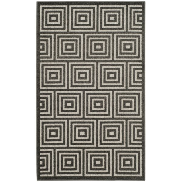 Candor Black Indoor/Outdoor Area Rug by George Oliver