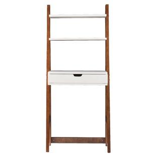 Hoang Ladder Bookcase Latitude Run