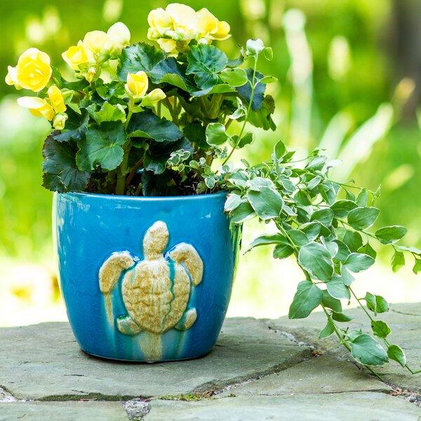 Elizabella Seaturtle Stoneware Pot Planter by Highland Dunes