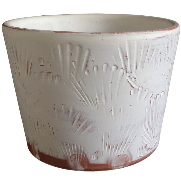 Hayes Shell Herb Clay Pot Planter by Highland Dunes