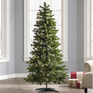 6 green fir artificial christmas tree with 250 clear lights - 6 Christmas Tree