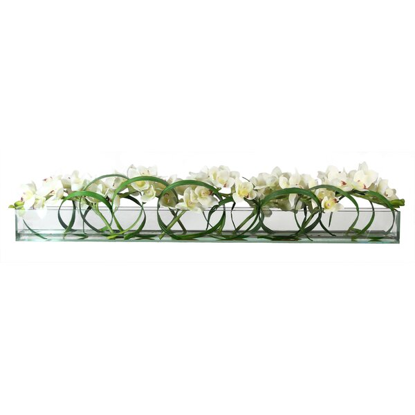 Cymbidium Orchids and Loops of Grass Shoots in Glass Plate Planter by Bay Isle Home