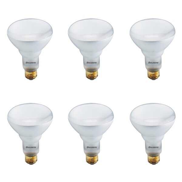 65W E26 Dimmable Halogen Spotlight Light Bulb (Set of 6) by Bulbrite Industries