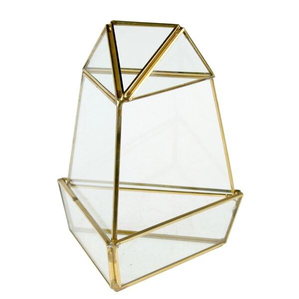 Carron Triangular Obelisk Glass Terrarium by Wrought Studio