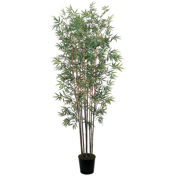 Mini Bamboo Tree in Pot by Nearly Natural
