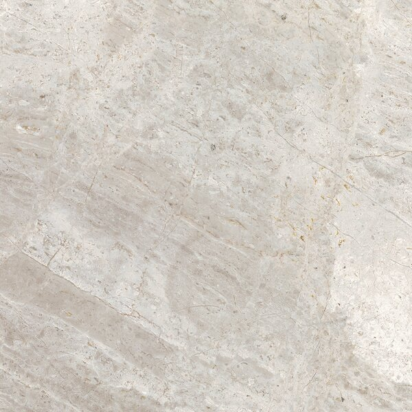 Peyton 18 W x 18 Porcelain Field Tile in Cool Gray by Parvatile