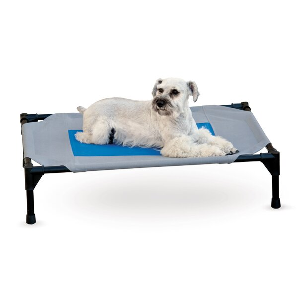 Ursula Amarillo Dog Bed Cover by Tucker Murphy Pet