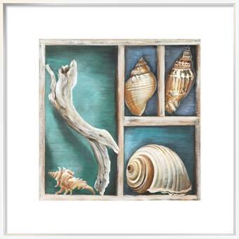 Evive Designs Vintage Seashells Iii By Julia Kearney Framed Graphic Art Wayfair