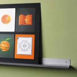 Envision® Wall Mounted Aluminum Shelf with Lip by Peter Pepper