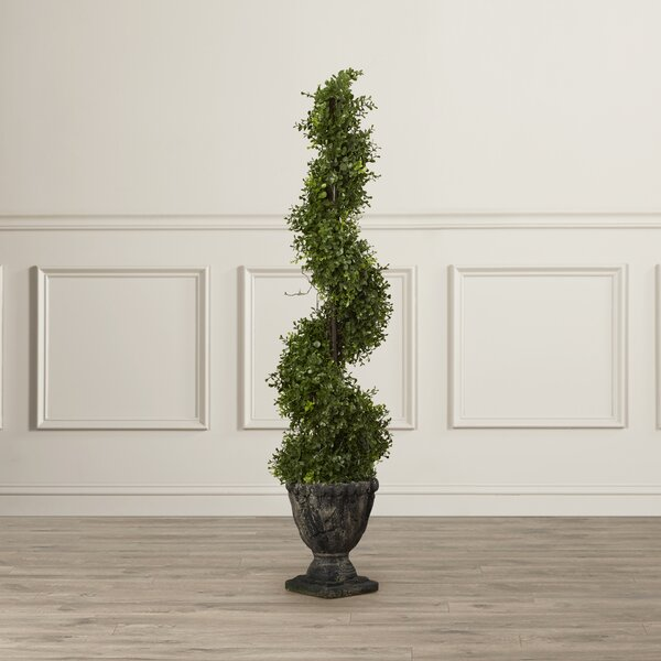 Spiral Topiary Tree in Urn by Astoria Grand