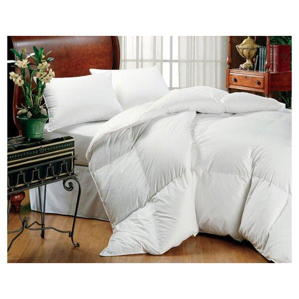 Midweight Down Comforter By Eddie Bauer.
