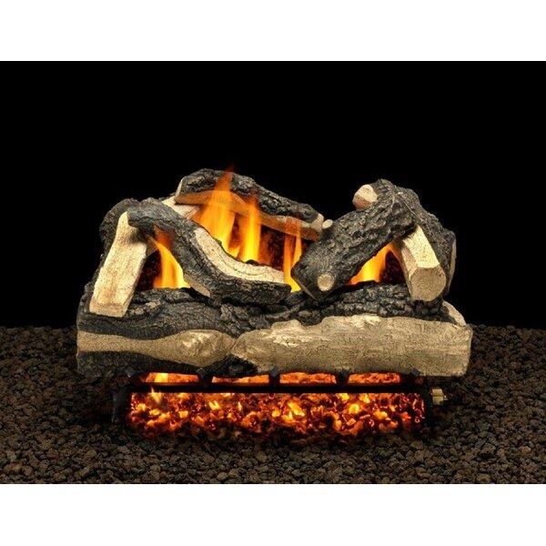 Salisbury Split Vented Natural Gas/Propane Fireplace Log Set By American Gas Log